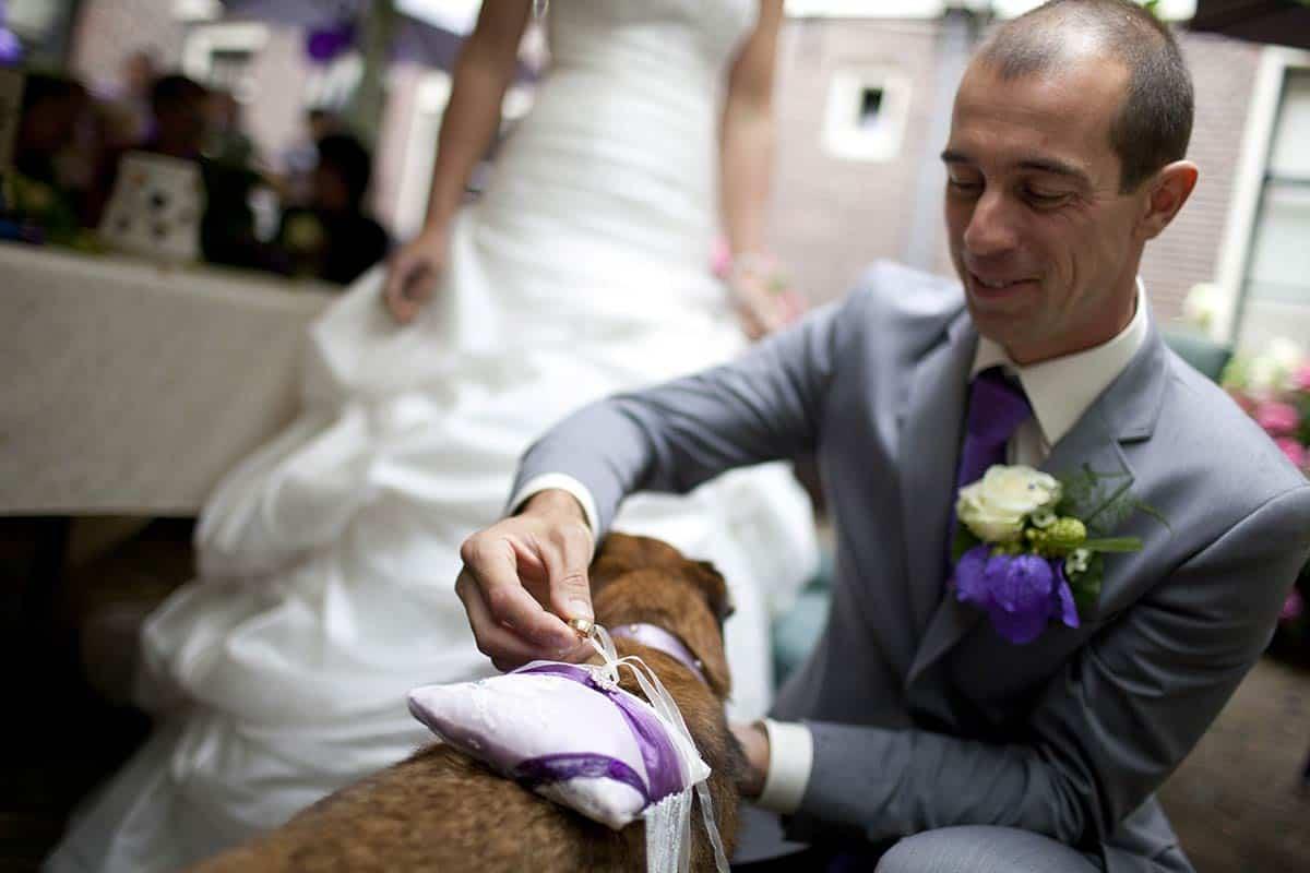 huwelijksceremonie trouwen trouwringen honden brengen