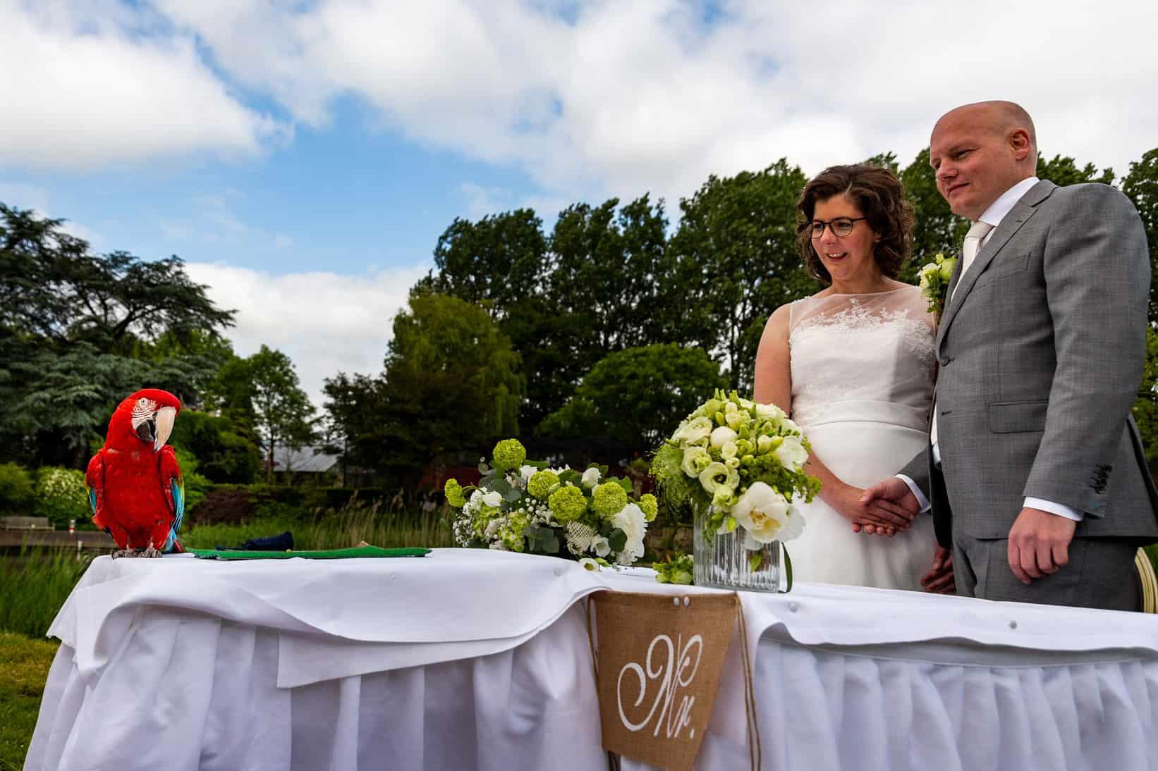 ara trouwringen Avifauna