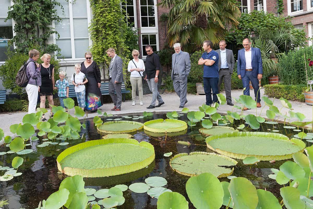 Botanische Tuin Amsterdam : Hortus amsterdam bruidsfotografie trouwfoto s mooie trouwreportages